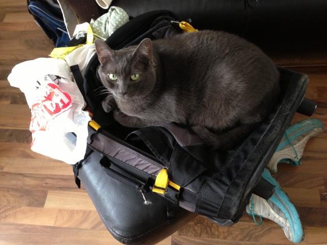 bk suitcase
